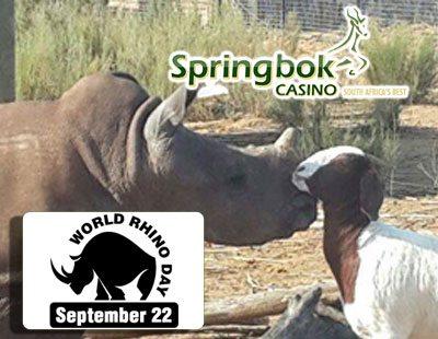 World Rhino Day 2016 at Springbok Casino