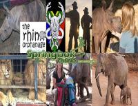 Focus on Animal Rescue Heroes at Springbok Casino